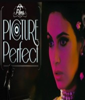 Picture Perfect (2014)