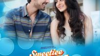 Sweetiee weds NRI (2017)